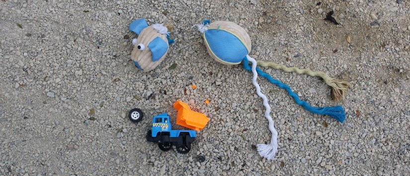 broken toy truck and soft dog toy with head ripped off
